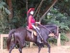 Cavalgada (18)