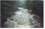 Cachoeiras (26)