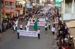 Desfile 2012 (1)