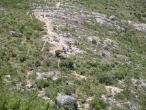 Parque Nacional (2)